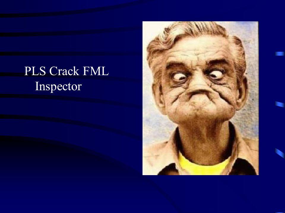 PLS Crack FML Inspector