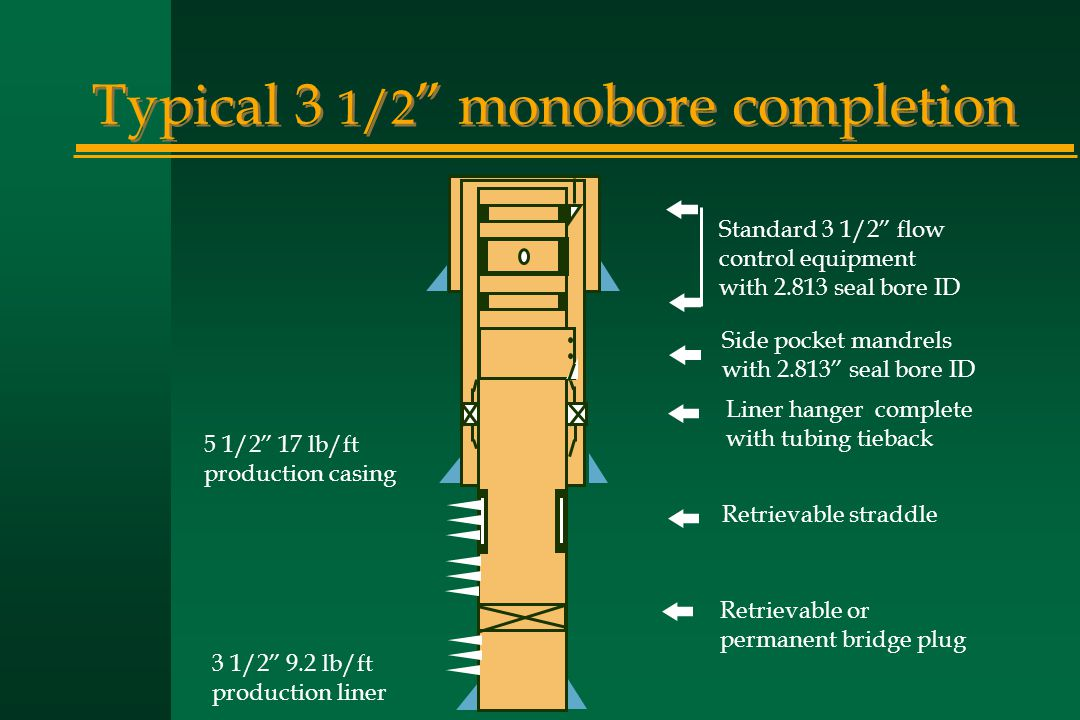"Typical 3 1/2 "" monobore completion 5 1/2"" 17 lb/ft production casing 3 1/2"" 9.2 lb/ft production liner Standard 3 1/2"" flow control equipment with 2."