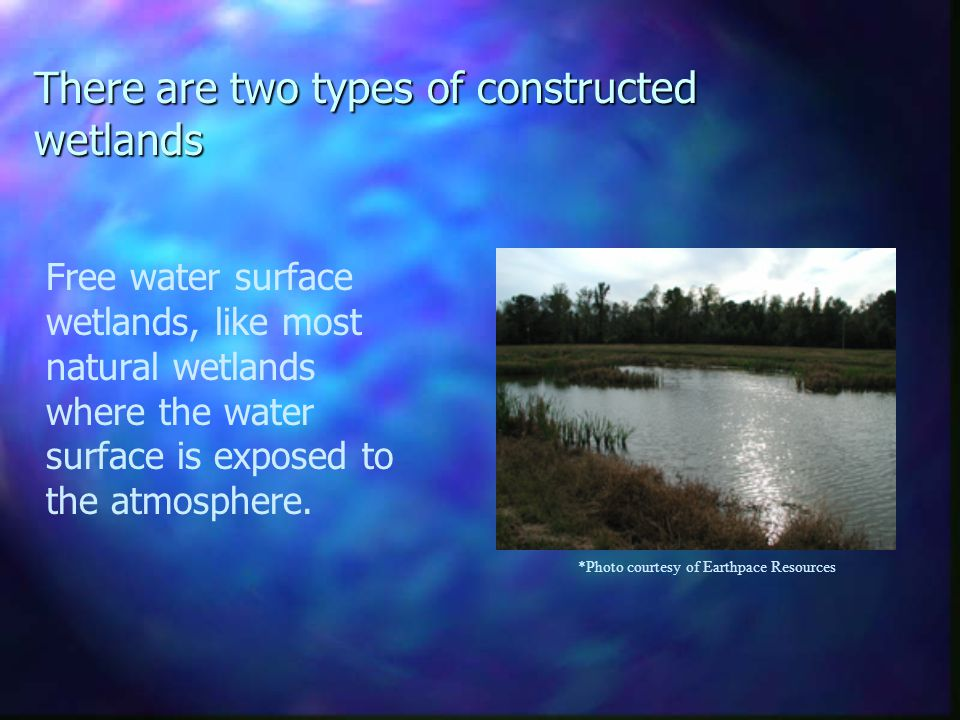 Subsurface wetlands, where the water surface is below ground level.