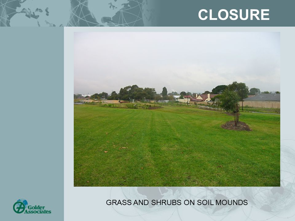 CLOSURE GRASS AND SHRUBS ON SOIL MOUNDS