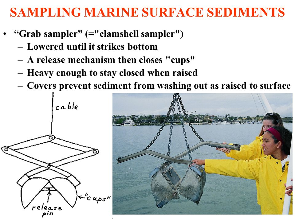 SAMPLING MARINE SURFACE SEDIMENTS Grab sampler (= clamshell sampler ) –Lowered until it strikes bottom –A release mechanism then closes cups –Heavy enough to stay closed when raised –Covers prevent sediment from washing out as raised to surface