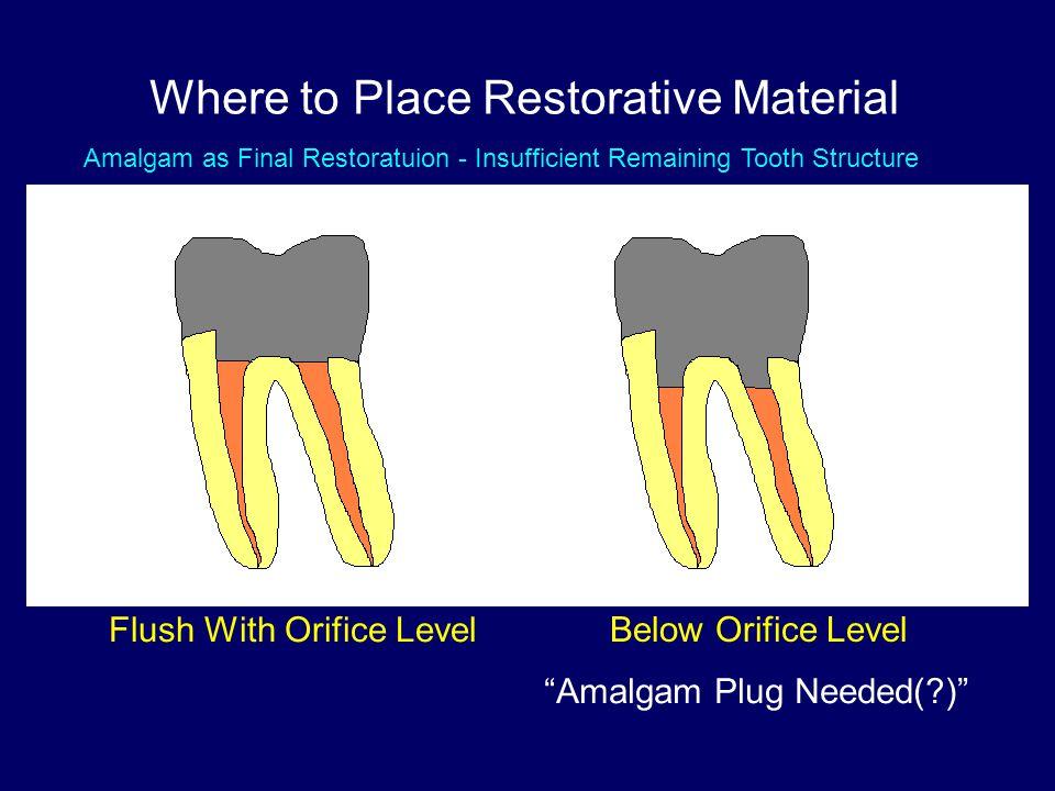 "Where to Place Restorative Material Flush With Orifice Level Below Orifice Level ""Amalgam Plug Needed(?)"" VS Amalgam as Final Restoratuion - Insuffici"