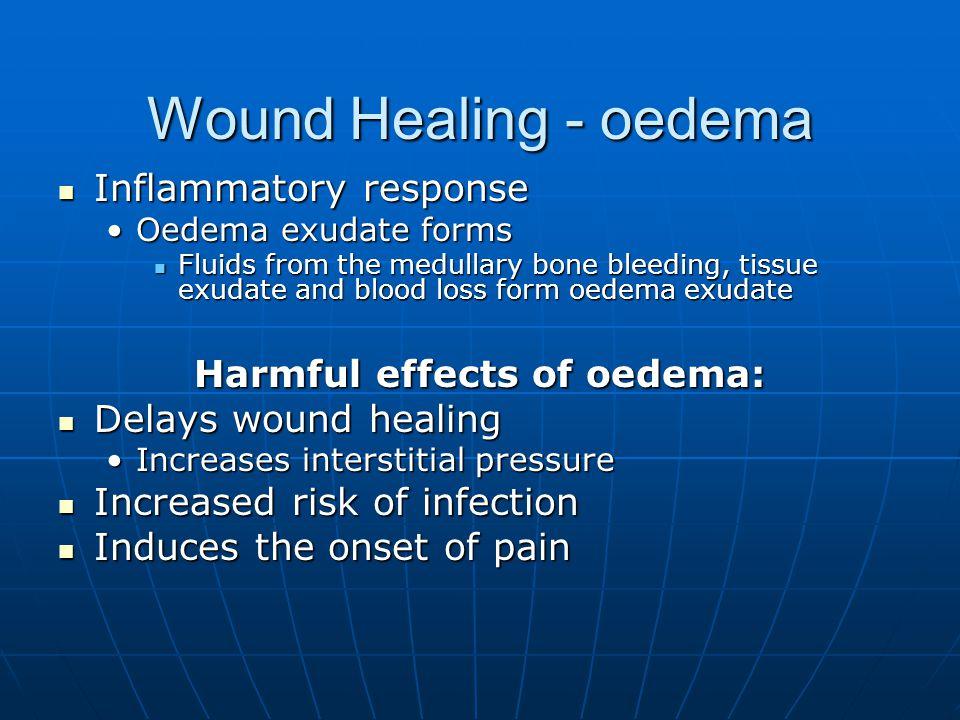 Wound Healing - oedema Inflammatory response Inflammatory response Oedema exudate formsOedema exudate forms Fluids from the medullary bone bleeding, t