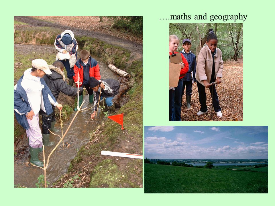 Curriculum work during the day in the forest. Not just ' nature ' and science but also…. ….art, history, language….