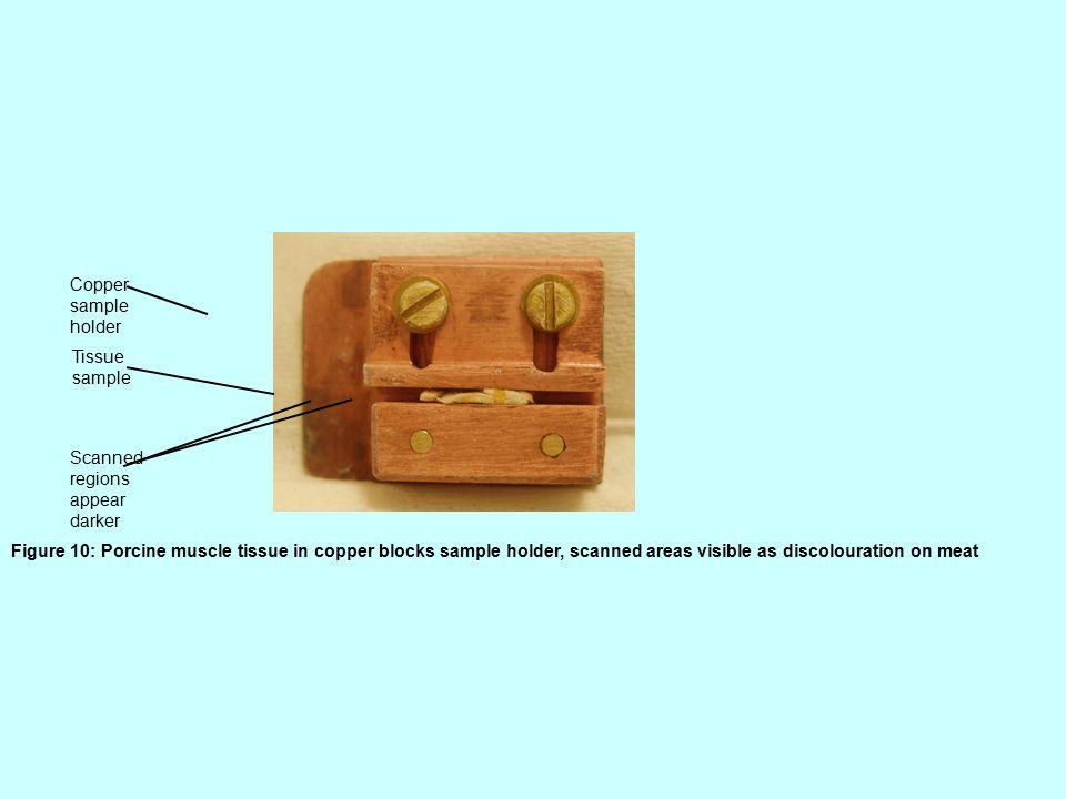 Copper sample holder Tissue sample Scanned regions appear darker Figure 10: Porcine muscle tissue in copper blocks sample holder, scanned areas visible as discolouration on meat