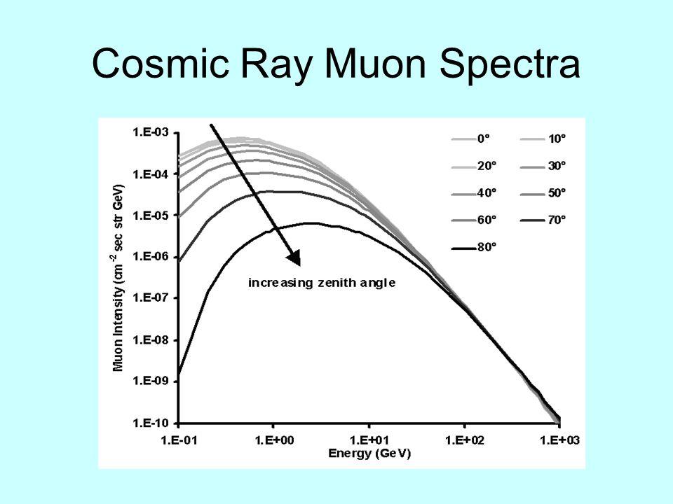 Cosmic Ray Muon Spectra