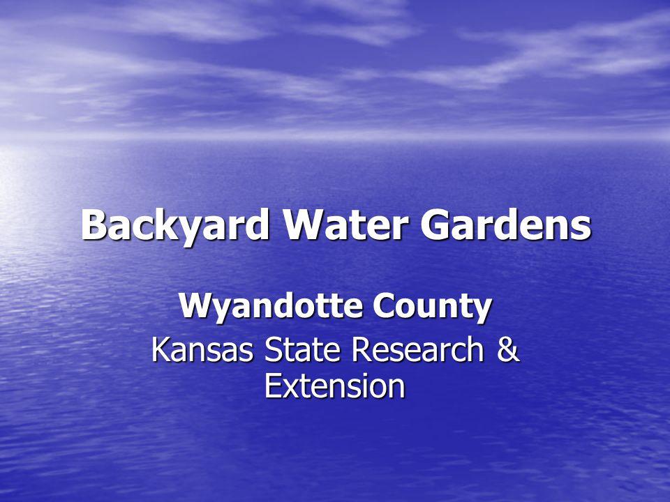 Backyard Water Gardens Courthouse Annex Water Garden