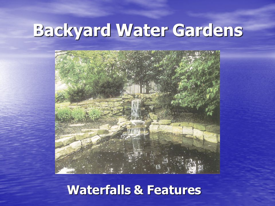 Backyard Water Gardens Waterfalls & Features Provide a focal point in addition to adding beauty Provide a focal point in addition to adding beauty Wide range of shapes, colors, sizes and price ranges Wide range of shapes, colors, sizes and price ranges Waterfalls – created by building a slope using excess soil, liner material & rocks to create a stream that is recycled with a submergible pump Waterfalls – created by building a slope using excess soil, liner material & rocks to create a stream that is recycled with a submergible pump