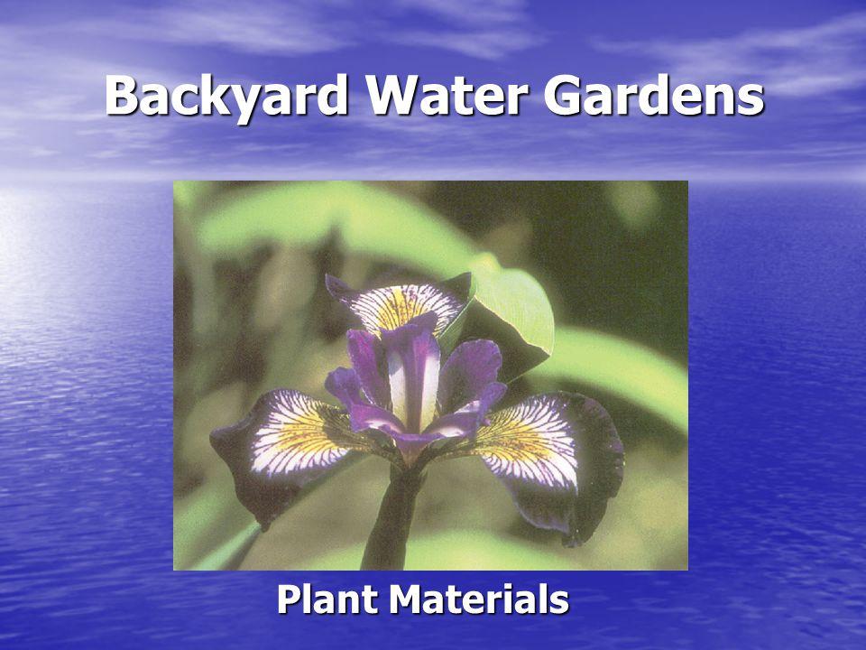 Backyard Water Gardens Plant Materials Deep water plants Deep water plants Marginal plants Marginal plants Submerged plants or oxygenators Submerged plants or oxygenators Floating plants Floating plants