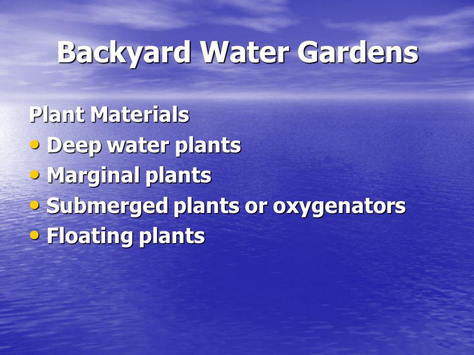 Backyard Water Gardens Deep water plants Include: hardy water lilies (Nymphaea spp.) and lotus (Nelumbo spp.) Include: hardy water lilies (Nymphaea spp.) and lotus (Nelumbo spp.) Marginal or Bog plants Include: dwarf cattails (Typha minima), dwarf papyrus (Cyperus profiler), arrowheads (sagittaria spp) Include: dwarf cattails (Typha minima), dwarf papyrus (Cyperus profiler), arrowheads (sagittaria spp) Live at the pond's edge Live at the pond's edge Provide cover, habitat, and oxygen Provide cover, habitat, and oxygen