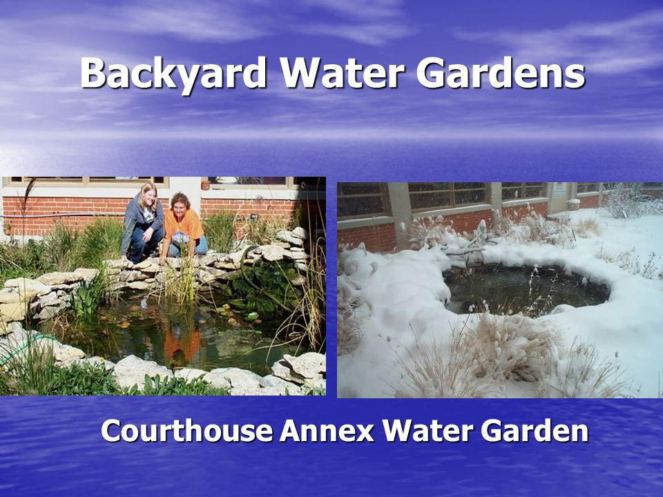 Backyard Water Gardens Water gardens may have a functional purpose – contour a slope Water gardens may have a functional purpose – contour a slope Water gardens add aesthetic value Water gardens add aesthetic value Water features add a delightful and soothing dimension to the environment Water features add a delightful and soothing dimension to the environment