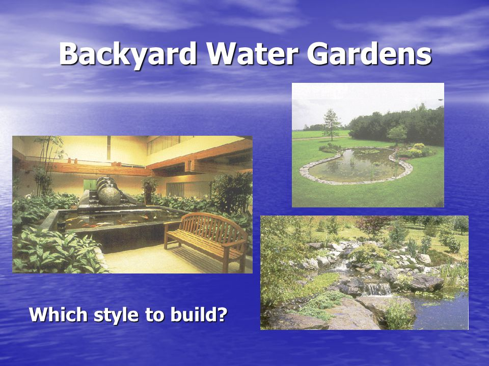 Backyard Water Gardens Which style to build?
