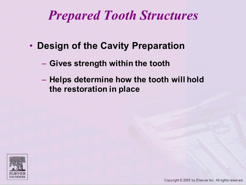 Copyright © 2005 by Elsevier Inc. All rights reserved. Design of the Cavity Preparation –Gives strength within the tooth –Helps determine how the toot