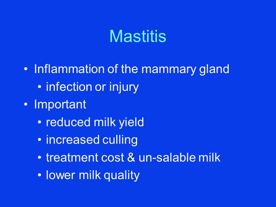Mastitis Inflammation of the mammary gland infection or injury Important reduced milk yield increased culling treatment cost & un-salable milk lower m