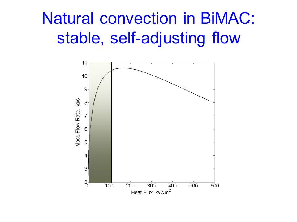 Natural convection in BiMAC: stable, self-adjusting flow