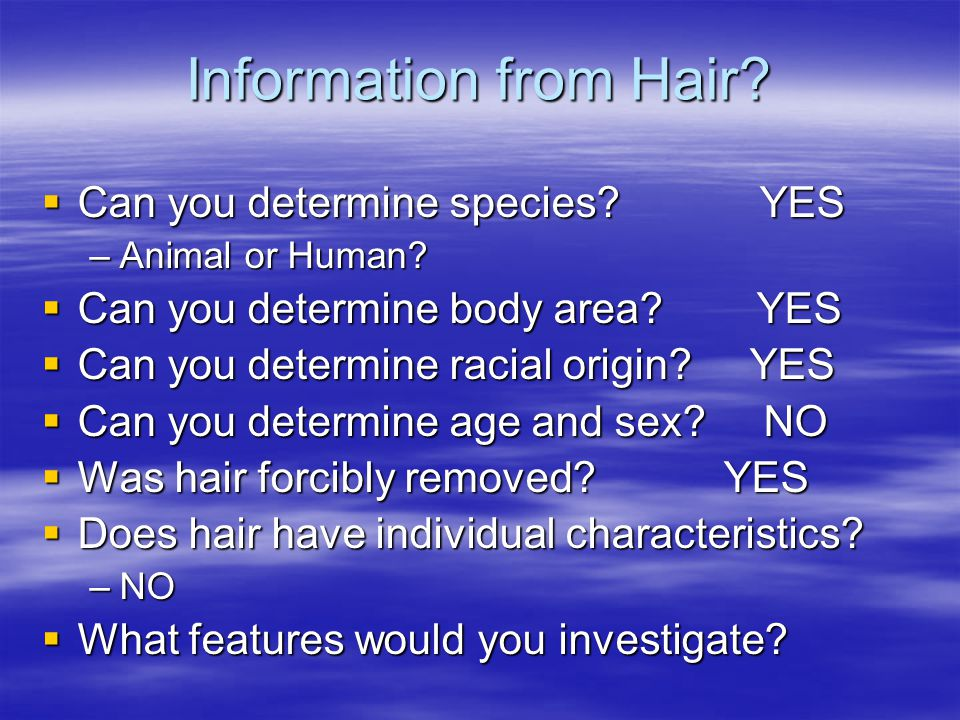 Information from Hair.  Can you determine species.
