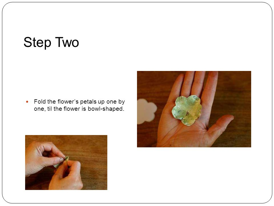 Step Two Fold the flower's petals up one by one, til the flower is bowl-shaped.