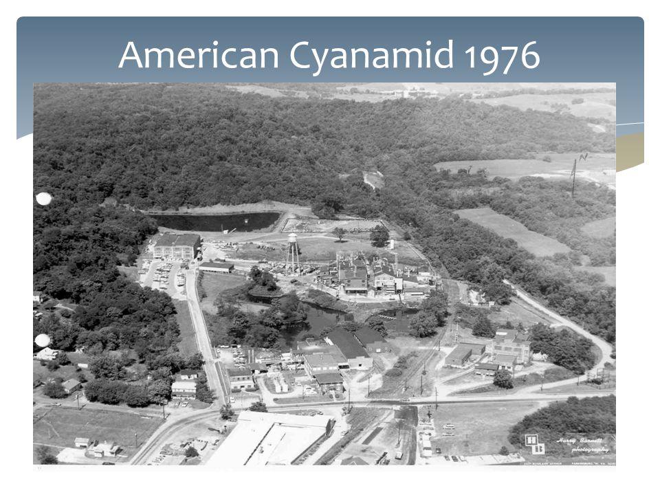 American Cyanamid 1976