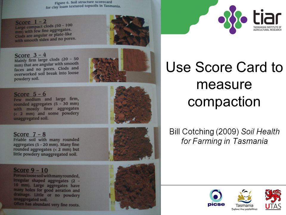 Use Score Card to measure compaction Bill Cotching (2009) Soil Health for Farming in Tasmania