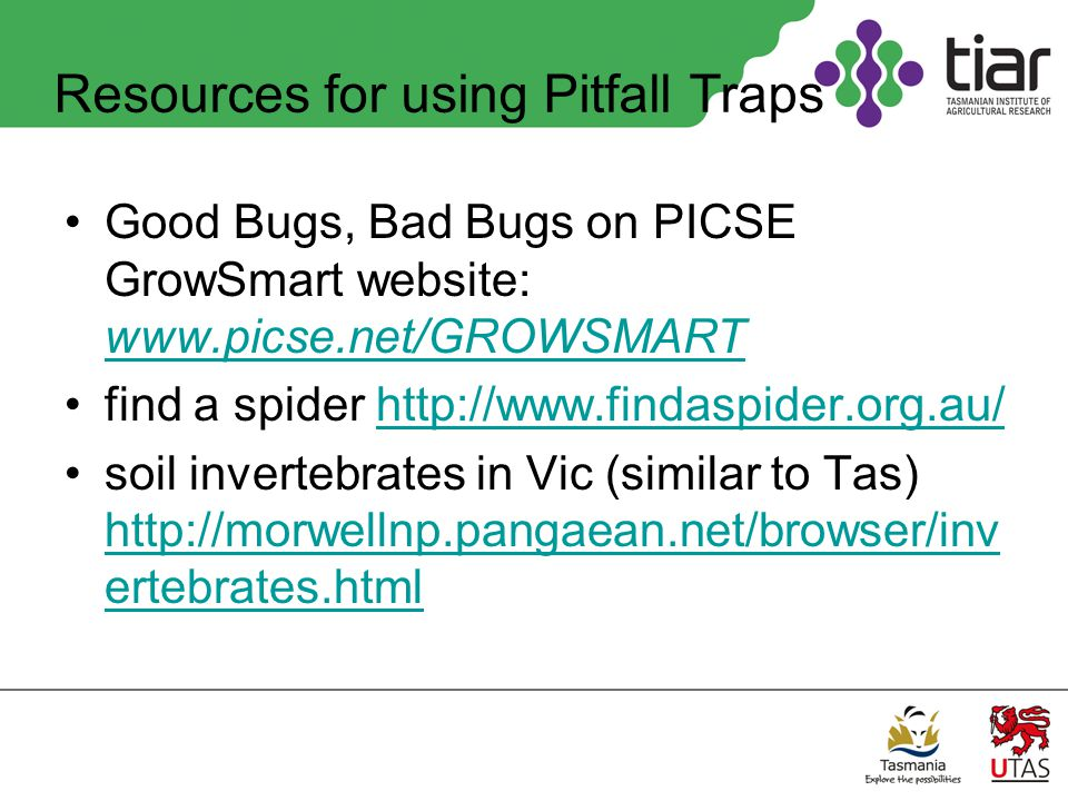 Resources for using Pitfall Traps Good Bugs, Bad Bugs on PICSE GrowSmart website: www.picse.net/GROWSMART www.picse.net/GROWSMART find a spider http://www.findaspider.org.au/http://www.findaspider.org.au/ soil invertebrates in Vic (similar to Tas) http://morwellnp.pangaean.net/browser/inv ertebrates.html http://morwellnp.pangaean.net/browser/inv ertebrates.html