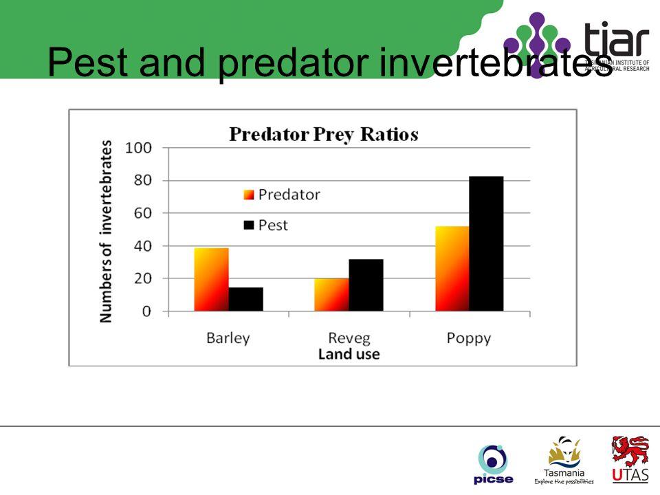 Pest and predator invertebrates