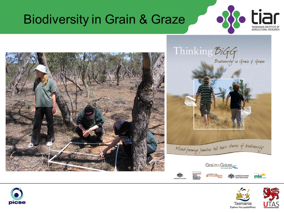 Biodiversity in Grain & Graze