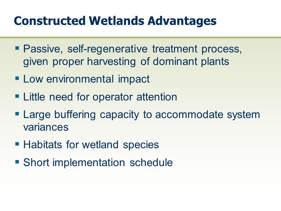Constructed Wetlands Advantages  Passive, self-regenerative treatment process, given proper harvesting of dominant plants  Low environmental impact