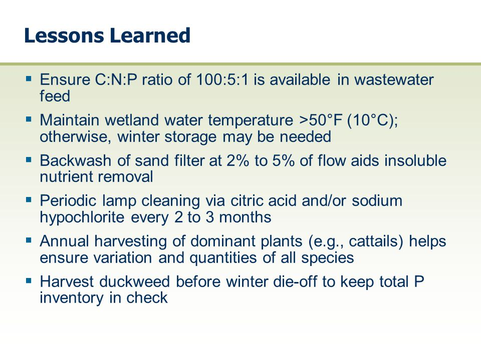 Lessons Learned  Ensure C:N:P ratio of 100:5:1 is available in wastewater feed  Maintain wetland water temperature >50°F (10°C); otherwise, winter s