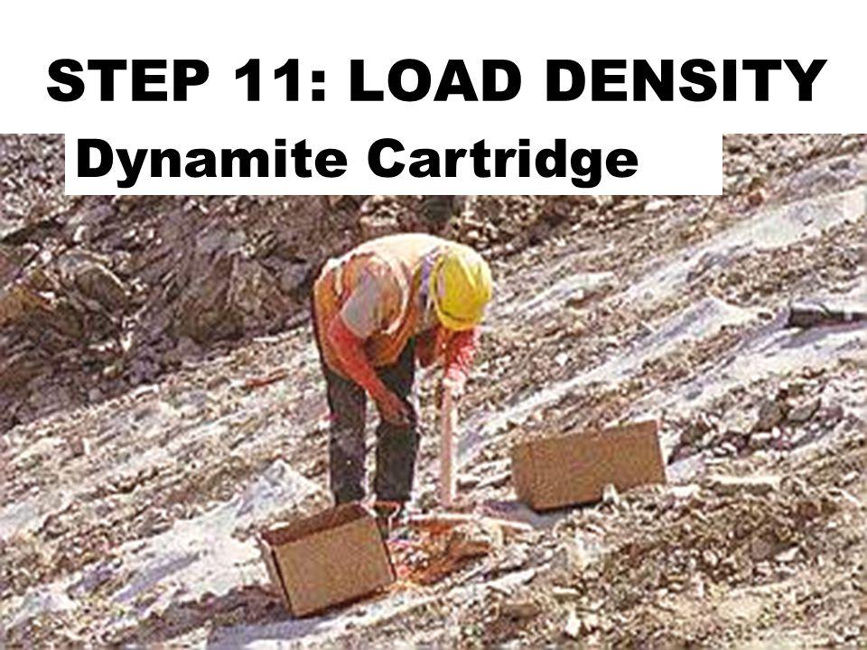 STEP 11: LOAD DENSITY Dynamite Cartridge