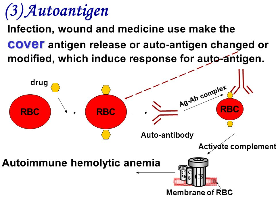 RBC Autoimmune hemolytic anemia drug RBC Auto-antibody RBC Ag-Ab complex Activate complement Membrane of RBC C9 C8C8 C 5b 67 (3) Autoantigen cover Infection, wound and medicine use make the cover antigen release or auto-antigen changed or modified, which induce response for auto-antigen.