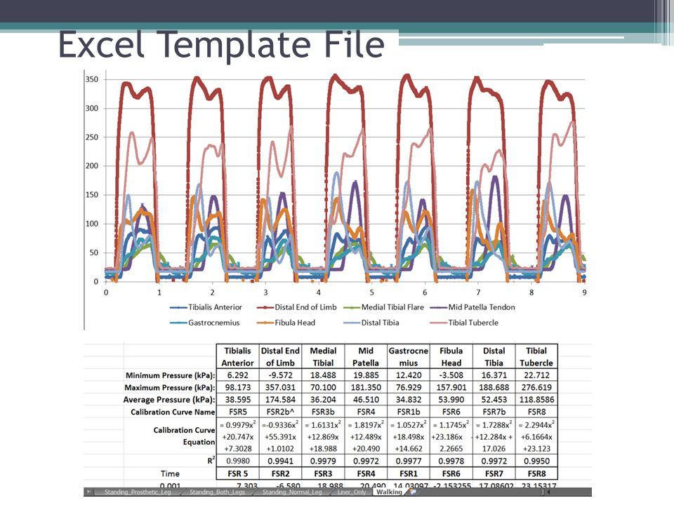 Excel Template File