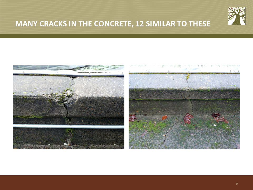 9 MANY CRACKS IN THE CONCRETE, 12 SIMILAR TO THESE