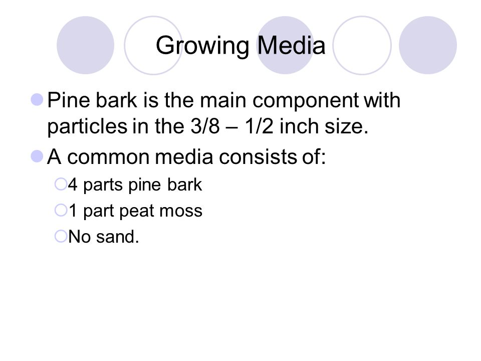 Growing Media Pine bark is the main component with particles in the 3/8 – 1/2 inch size. A common media consists of:  4 parts pine bark  1 part peat