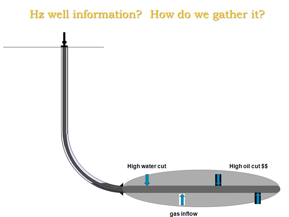 Hz well information How do we gather it High water cut gas inflow High oil cut $$