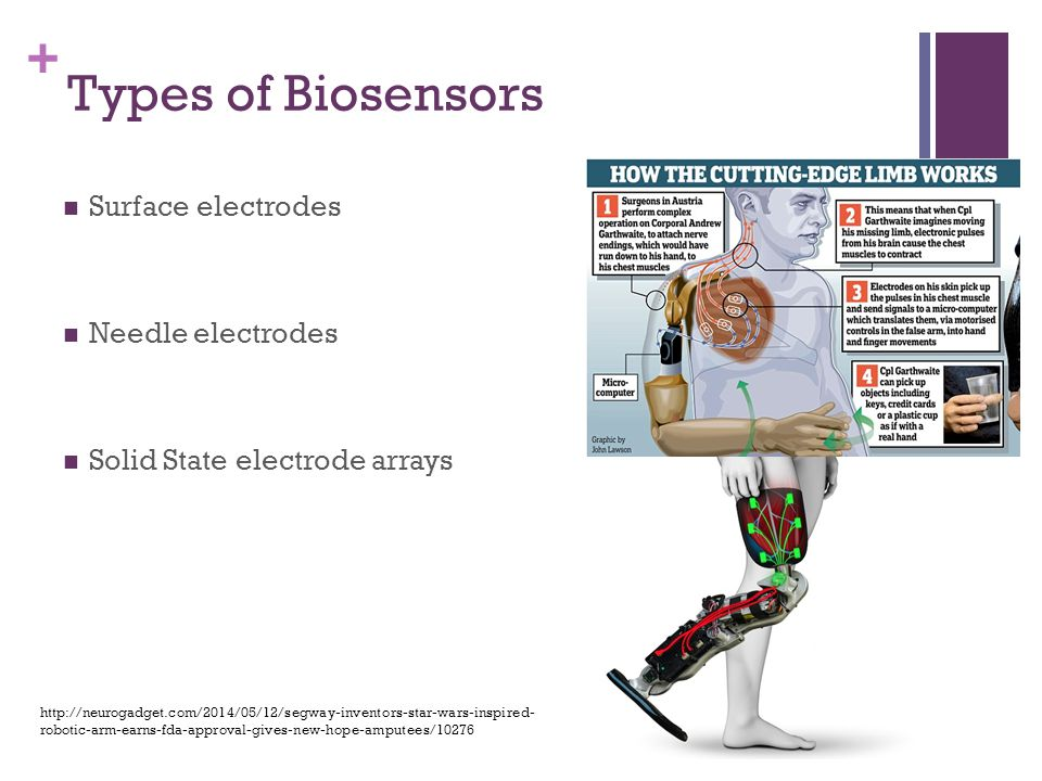 + Types of Biosensors Surface electrodes Needle electrodes Solid State electrode arrays http://neurogadget.com/2014/05/12/segway-inventors-star-wars-inspired- robotic-arm-earns-fda-approval-gives-new-hope-amputees/10276