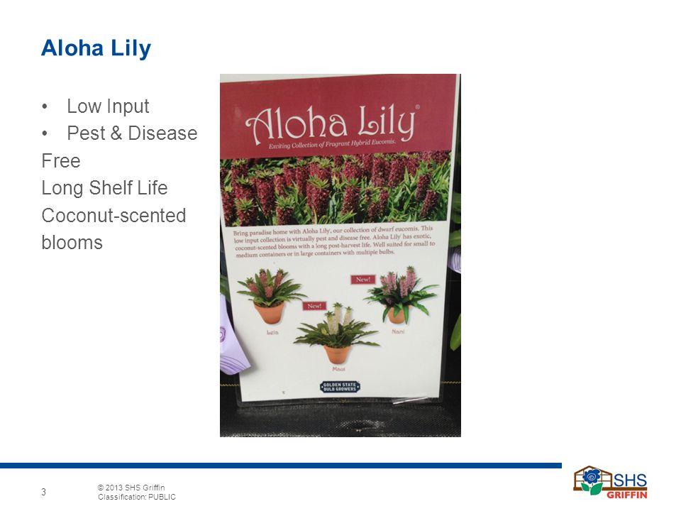© 2013 SHS Griffin Classification: PUBLIC 4 Seasonal Marketing Ideas