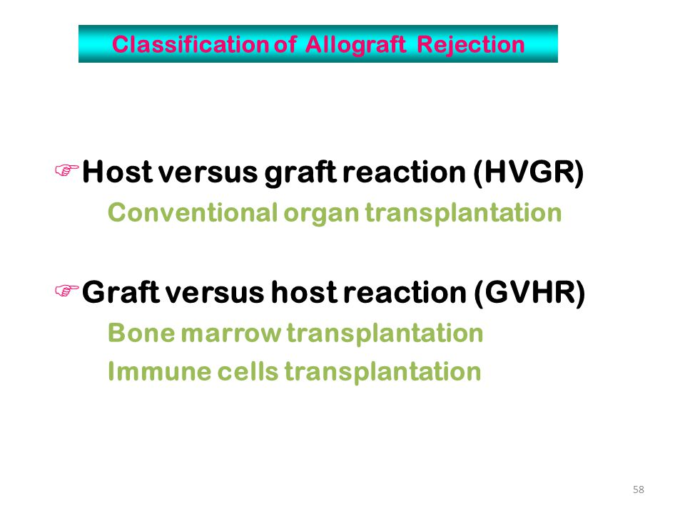 59 Conditions  Enough immune competent cells in grafts  Immunocompromised host  Histocompatability differences between host and graft II.Graft versus host reaction (GVHR)