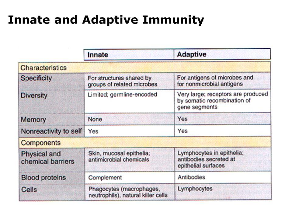 Adaptive Immune Responses
