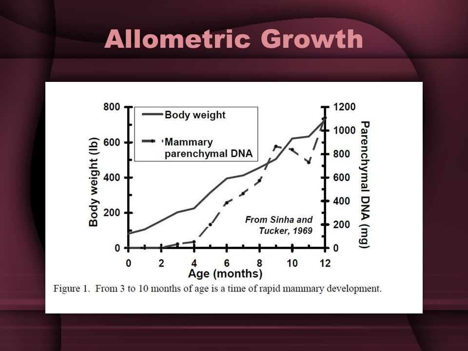 Allometric Growth