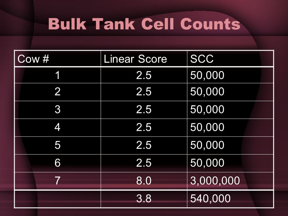 Bulk Tank Cell Counts Cow #Linear ScoreSCC 12.550,000 22.550,000 32.550,000 42.550,000 52.550,000 62.550,000 78.03,000,000 3.8540,000