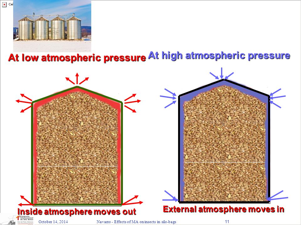 October 14, 2014Navarro - Effects of MA on insects in silo-bags11 At low atmospheric pressure At high atmosphericpressure At high atmospheric pressure