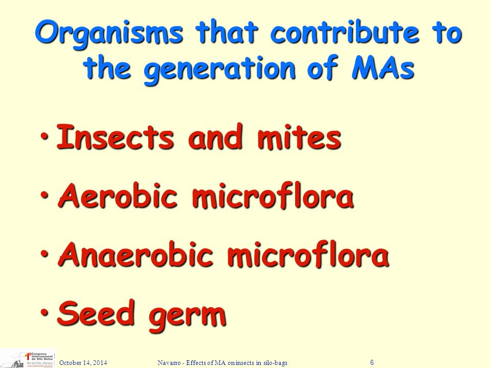 October 14, 2014Navarro - Effects of MA on insects in silo-bags6 Organisms that contribute to the generation of MAs Insects and mitesInsects and mites