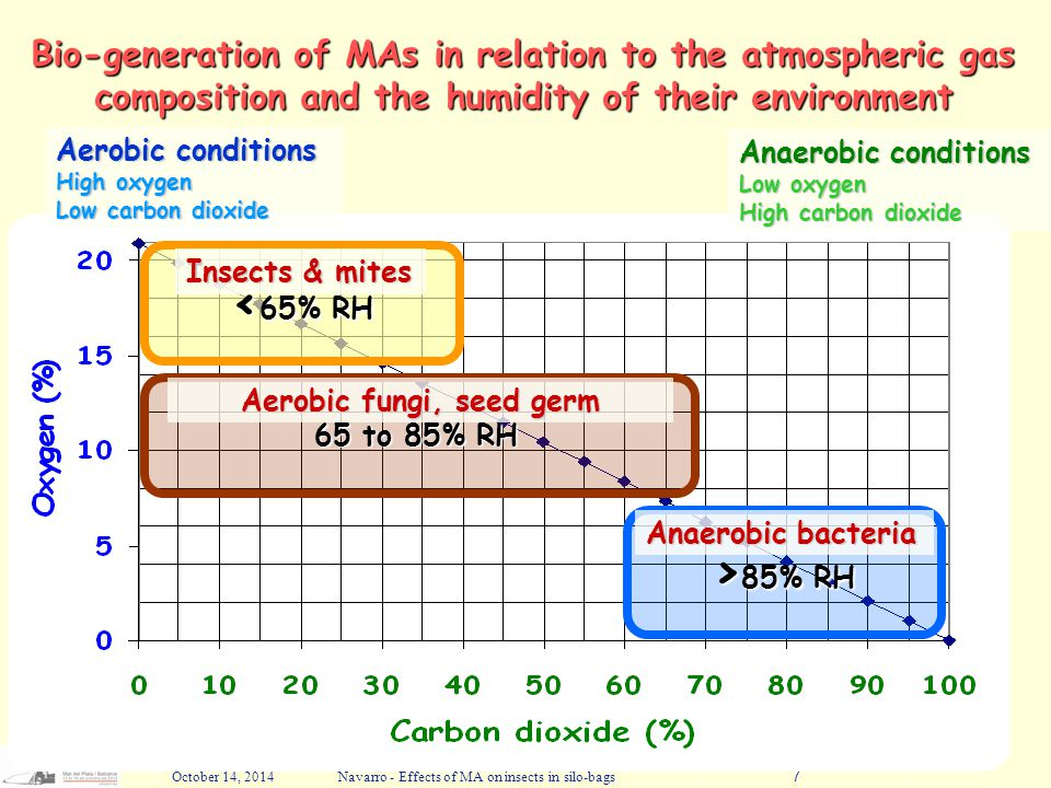 October 14, 2014Navarro - Effects of MA on insects in silo-bags7 Bio-generation of MAs in relation to the atmospheric gas composition and the humidity