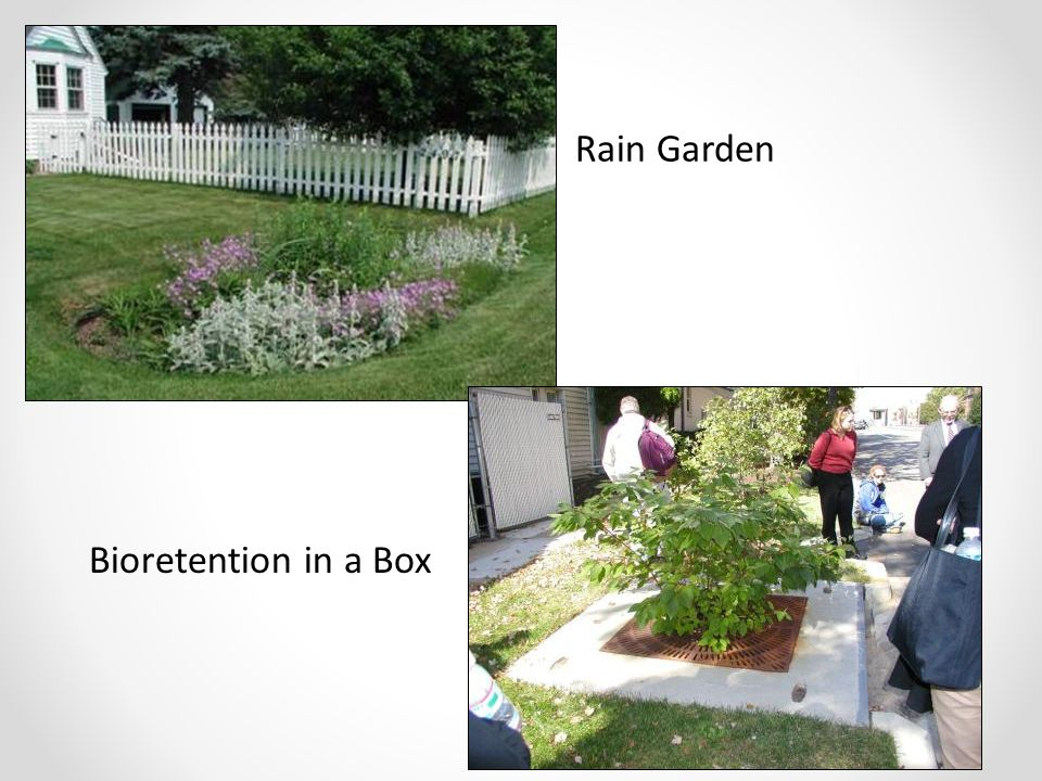 Rain Garden Bioretention in a Box