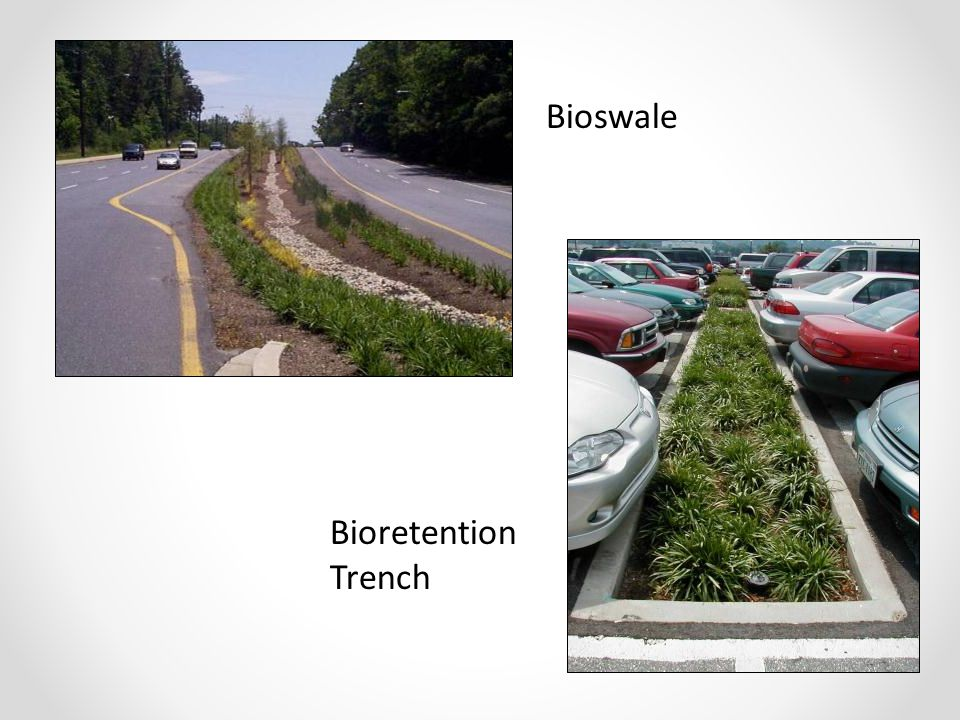 Bioswale Bioretention Trench