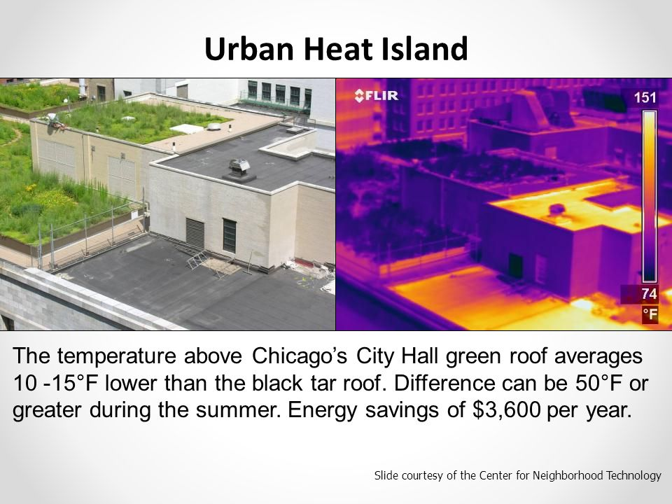 Slide courtesy of the Center for Neighborhood Technology The temperature above Chicago's City Hall green roof averages 10 -15°F lower than the black tar roof.
