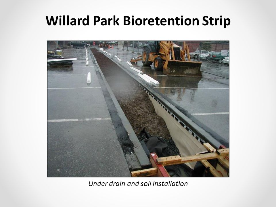 Willard Park Bioretention Strip Under drain and soil installation