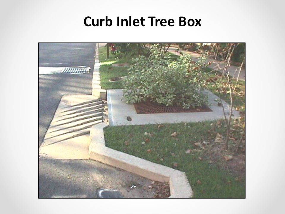 Curb Inlet Tree Box