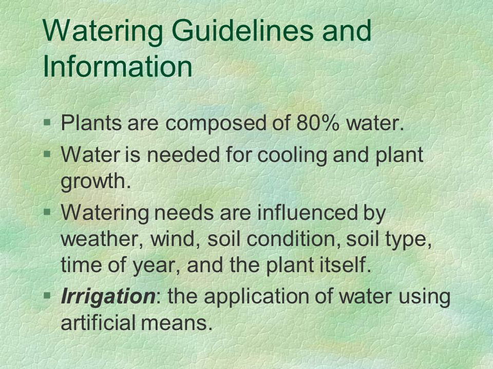 Watering Guidelines and Information §Plants are composed of 80% water.