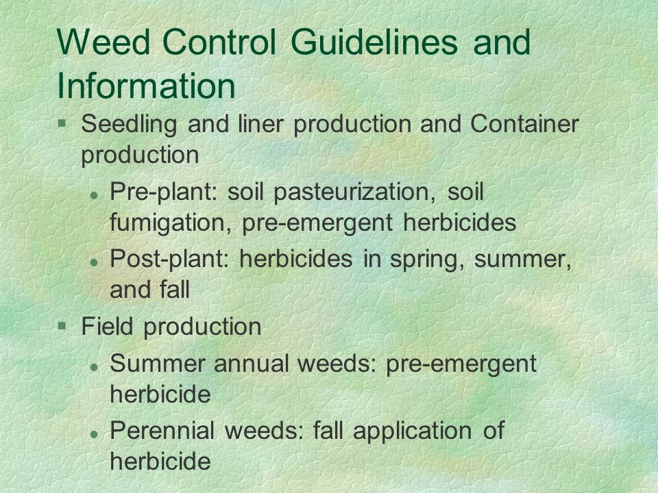 Weed Control Guidelines and Information §Seedling and liner production and Container production l Pre-plant: soil pasteurization, soil fumigation, pre-emergent herbicides l Post-plant: herbicides in spring, summer, and fall §Field production l Summer annual weeds: pre-emergent herbicide l Perennial weeds: fall application of herbicide